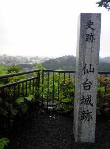 aobazyou2.jpg