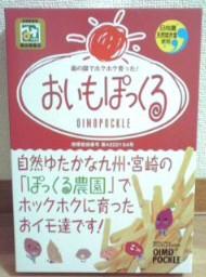 hakatamiyage2010-3.jpg