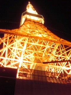tokyotower101206-1.jpg